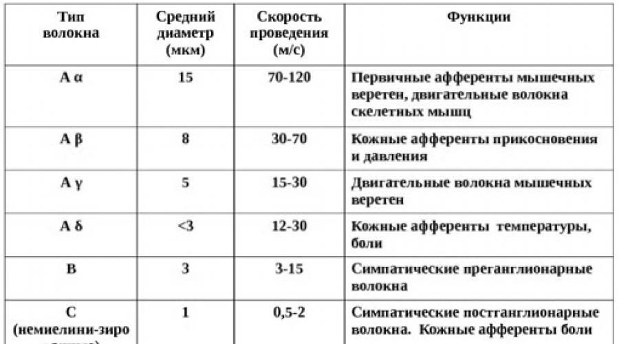 neklaidingas forex sistema)